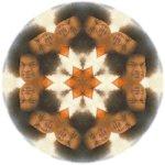 Sai Mandala