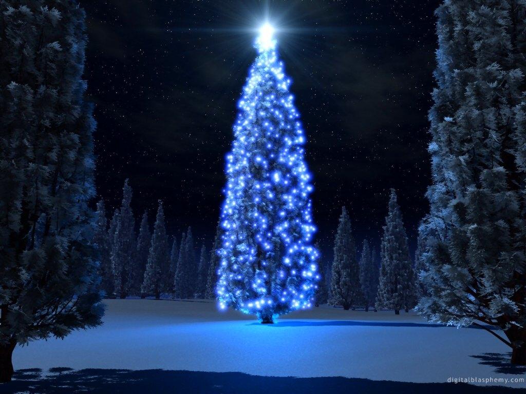 Blue Christmas Tree Forum Avatar: Sathya Sai Baba - Life, Love & Spirituality