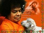 Sathya Sai Baba Christmas