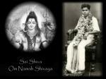 Sathya Sai Shiva