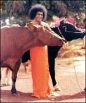 Sathya Sai Gopala Baba