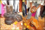 300 Year Old Shiva Linga Unearthed At Puttaparthi Behind Sri Sathya Sai Baba Ashram