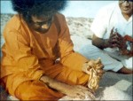 Sathya Sai Baba Gold Krishna