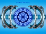 BP Oil Spill - Healing Dolphin Mandala Two