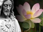 Jesus Christ Photos Lotus Wallpaper